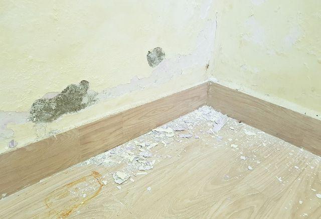 Dự án Đồi Xanh Nha Trang: Dân bức xúc vì tường nhà bị thấm nước, bong tróc - 3